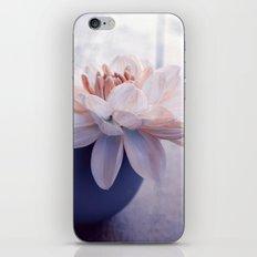 mercoledi iPhone & iPod Skin