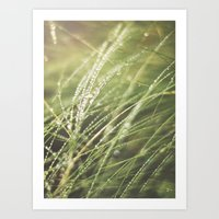 Whimsical Drops Art Print