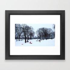 Snow in Central Park V Framed Art Print