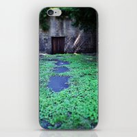Over the Hill and through the Swamp, Color iPhone & iPod Skin