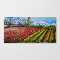 Tulips Of The Skagit Canvas Print