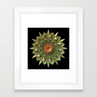 Cactus Flower Mandala Framed Art Print