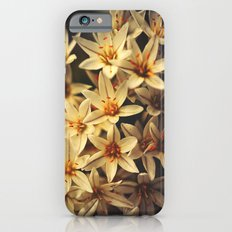 Celebrate Life Slim Case iPhone 6s