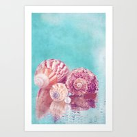 Seashell Group Art Print