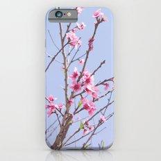 Portuguese Blossoms Slim Case iPhone 6s