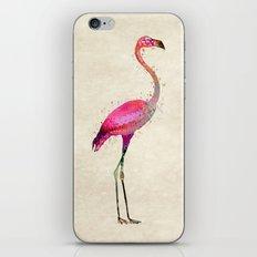 Pink Flamingo iPhone & iPod Skin