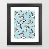 Blue Sky Swallow Flight Framed Art Print