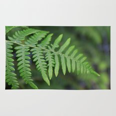 green fern leaves. floral nature wild plant photography. Rug