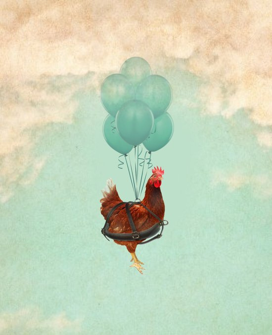 "Chickens can't fly (""The sky is falling!"") Art Print"