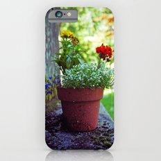 Cemetery plant iPhone 6s Slim Case