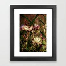 Thorns Framed Art Print
