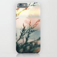 7 a.m. iPhone 6 Slim Case