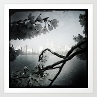 San Remo Behind Cherry Blossoms Art Print