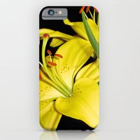 iPhone & iPod Case featuring Lily by Stephen Linhart