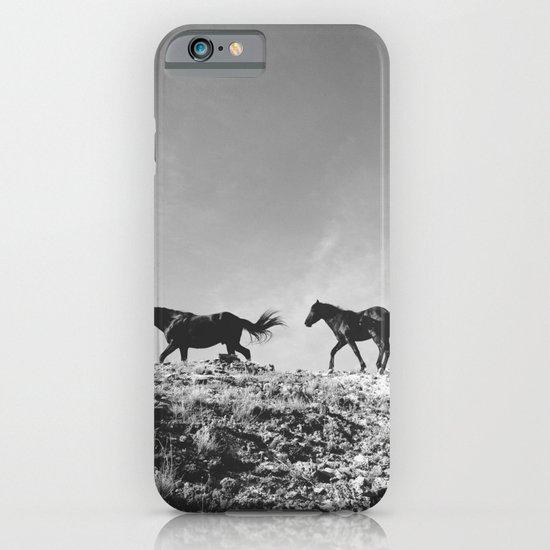 Pryor Mountain Wild Mustangs iPhone & iPod Case
