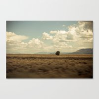 Loner Canvas Print