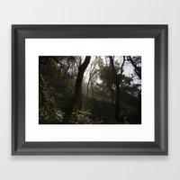 Light Forest Framed Art Print