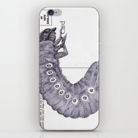 Bettle Larvae Postcard iPhone & iPod Skin