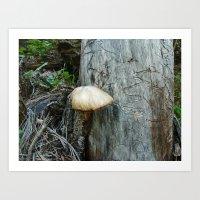 Mushroom with Worm Writing Art Print