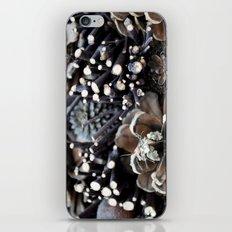 Pinecones iPhone & iPod Skin