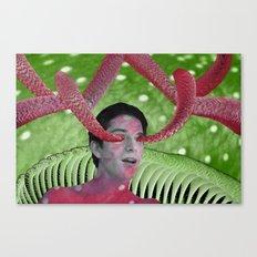 Crustacean Canvas Print