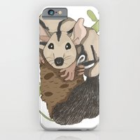 iPhone & iPod Case featuring Sugar Glider - Australian Native Animals by Paula Deuber