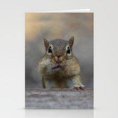 CHIPMUNK CHEEKS Stationery Cards