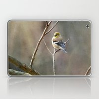 Morning Goldfinch Laptop & iPad Skin