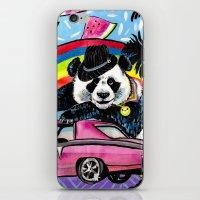 Miami Panda iPhone & iPod Skin