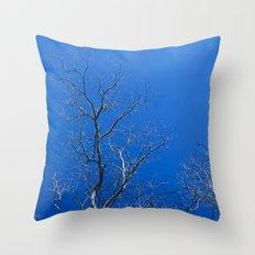 Reach Throw Pillow