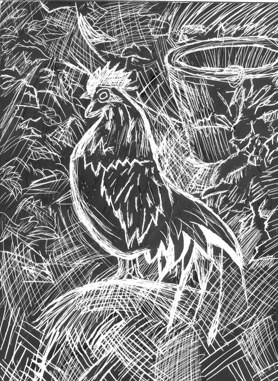 Chicken Scratch Art Print