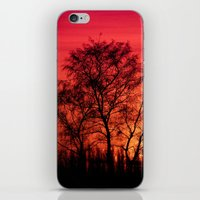Edge of Sunset iPhone & iPod Skin