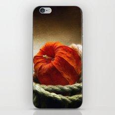 Tangled Season iPhone & iPod Skin