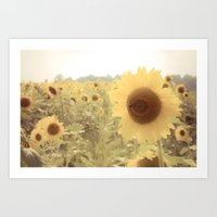 Sunflower Dreams Art Print