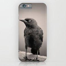 Goth Grackle iPhone 6 Slim Case
