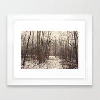 Bare Woods Framed Art Print