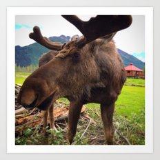 AK Moose Art Print