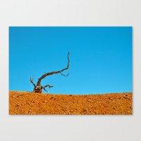 The Tree at Bryce Canyon National Park. Utah, USA Canvas Print