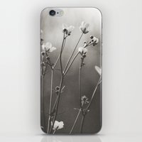 Blurry Dreams iPhone & iPod Skin