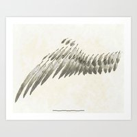 Wing Art Print