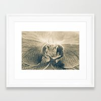 Prey Framed Art Print