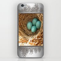 Four American Robin Eggs iPhone & iPod Skin