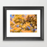 Orange Backdrop Framed Art Print