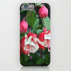 Fuchsia Slim Case iPhone 6s