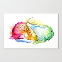Deer Nap Canvas Print