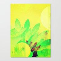 Tropical Sun Drops heat Canvas Print