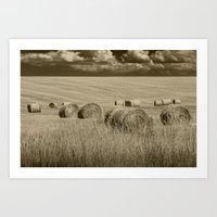 Sepia Toned Straw Hay Bales in a Summer Harvest Field Art Print