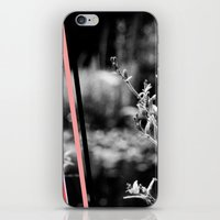 garden stripes iPhone & iPod Skin