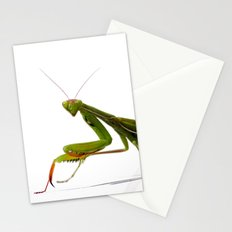 Mantis Stationery Cards