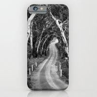 Winding Road - Barossa Valley, South Australia iPhone 6 Slim Case